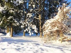 What a beautiful winter wonderland 😍❄️ Nature, Winterstyle, winterlook, Salzburg, Austria, Snow, Snowflakes, Lifestyle, Sporty